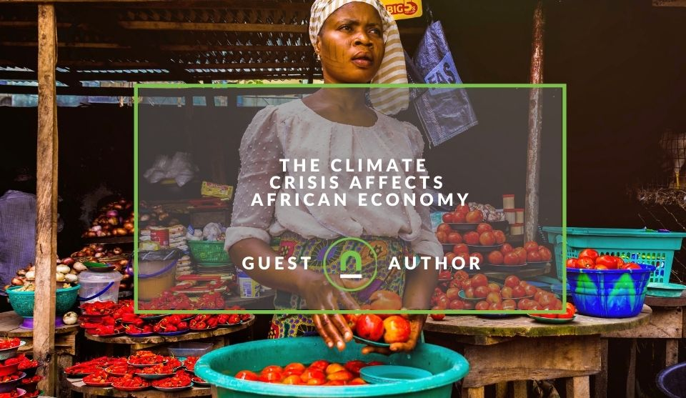 Climate crisis changes African economy