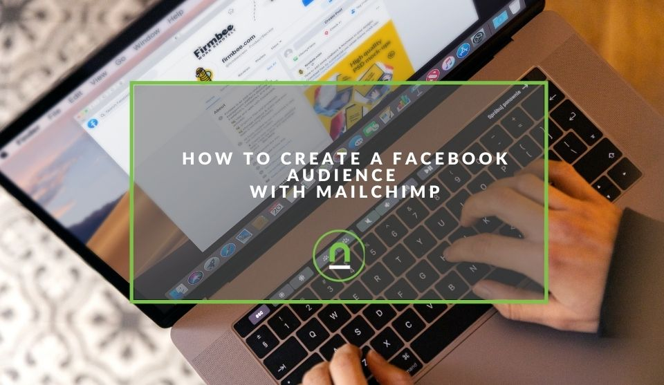 Mailchimp audiences injected into Facebook