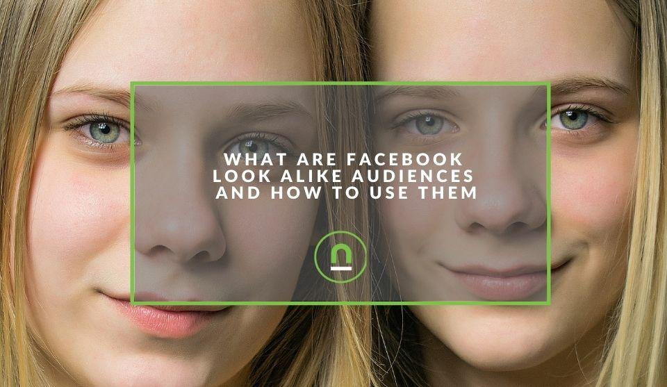 Facebook look alike audience explained