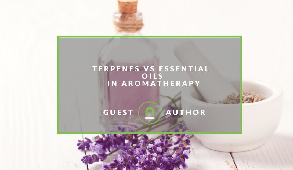 A guide to Terpenes use in Aromatherapy