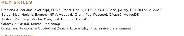 An example of a developer resume