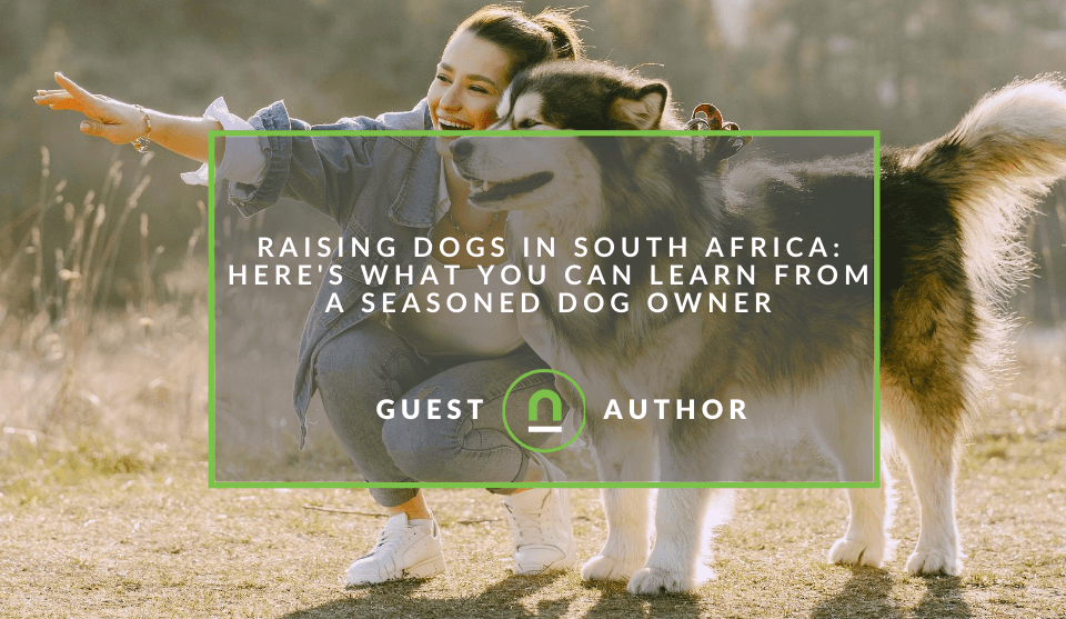 Raising Dogs In South Africa