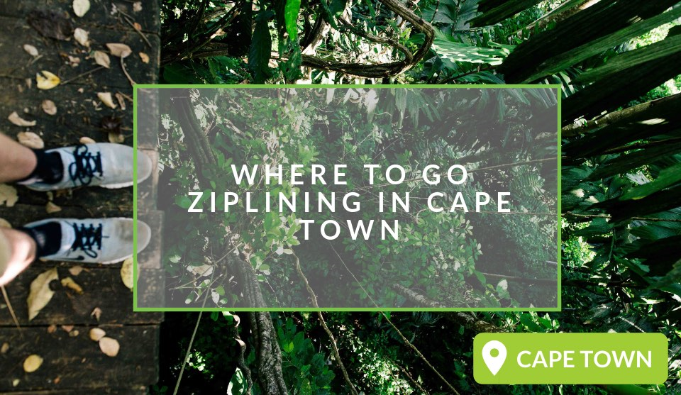 Ziplining in Cape Town