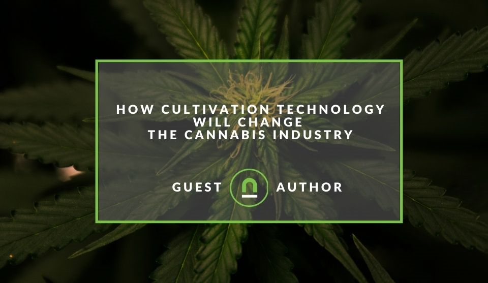 How technology improves cannabis growing