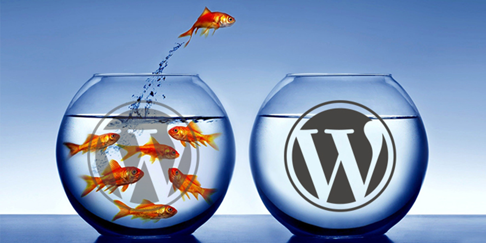 How to successfully migrate your WordPress site to a new host