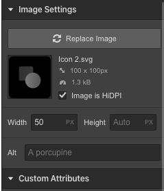 Webflow inserting image