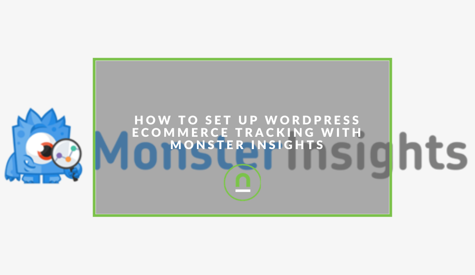 eCommerce tracking setup with Monster Insights Plugin