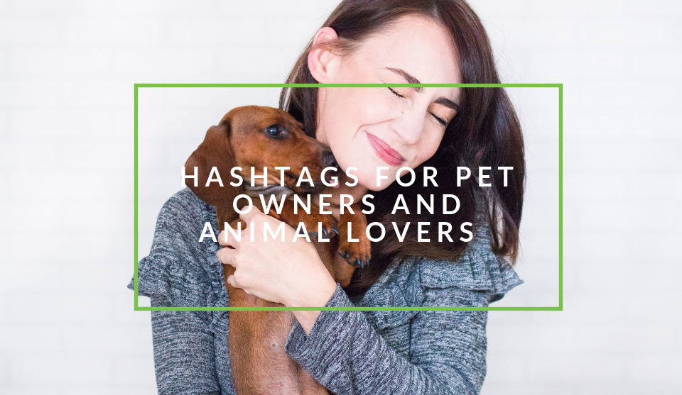 Hashtags for pet owners