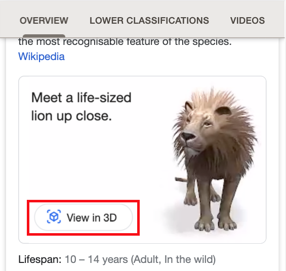 3D lions in search