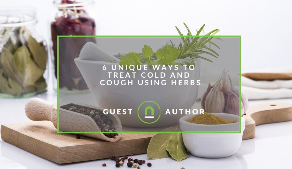 cold remedies using herbs