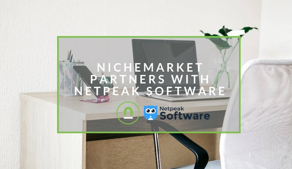 nichemarket and netpeak partner