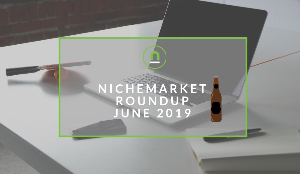 nichemarket performance summary 2019