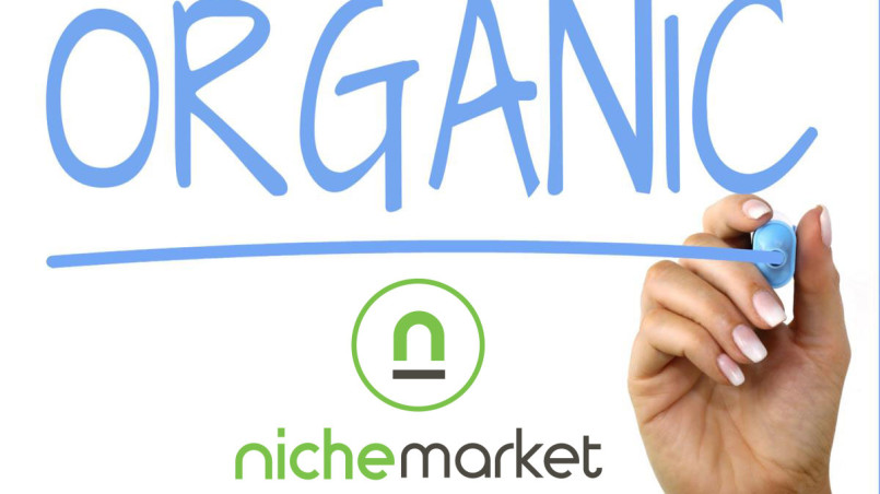 nichemarket organic traffic growth