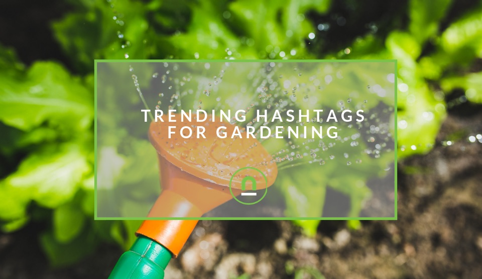 Popular hashtags for gardening