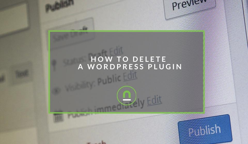 Deleting a wordpress plugin