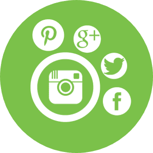 nichemarket social media marketing icon