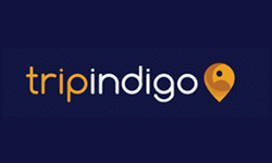 Tripindigo Logo