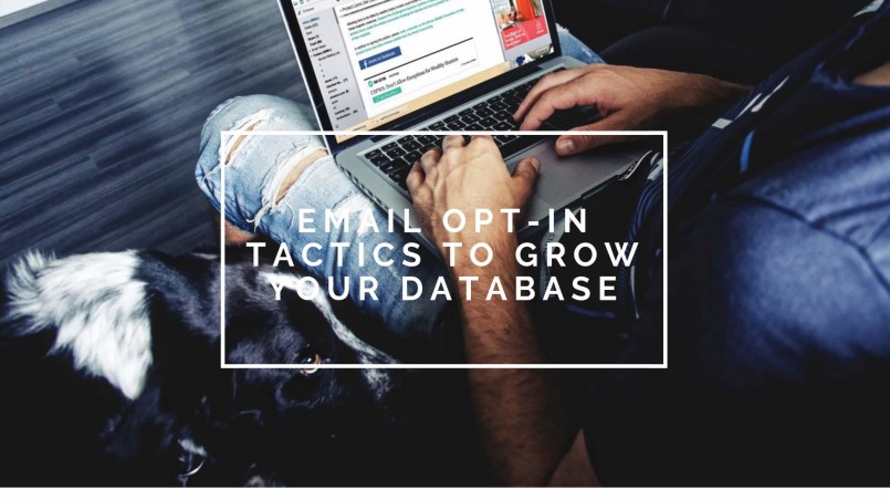 email database growth tactics